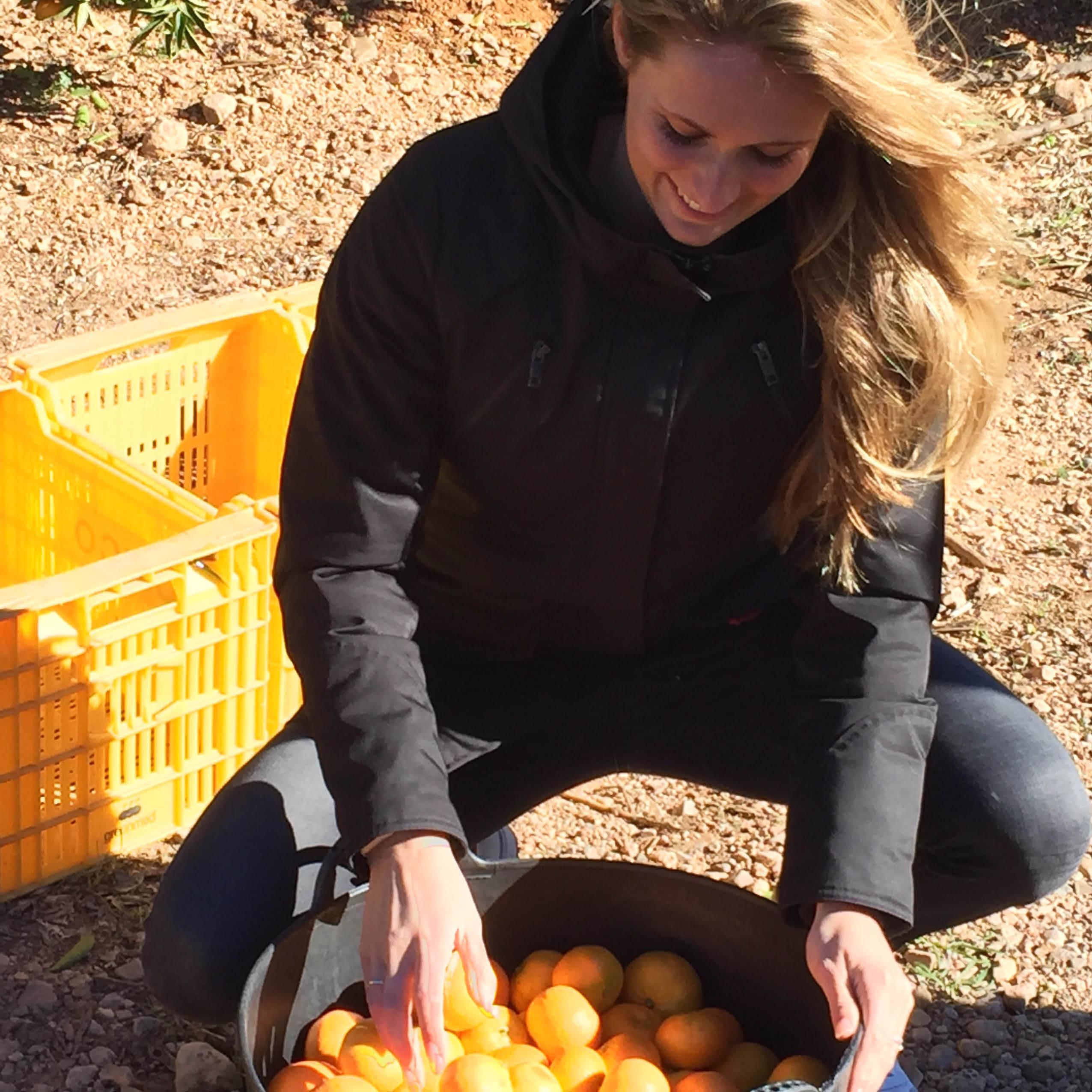 Geplukte mandarijnen