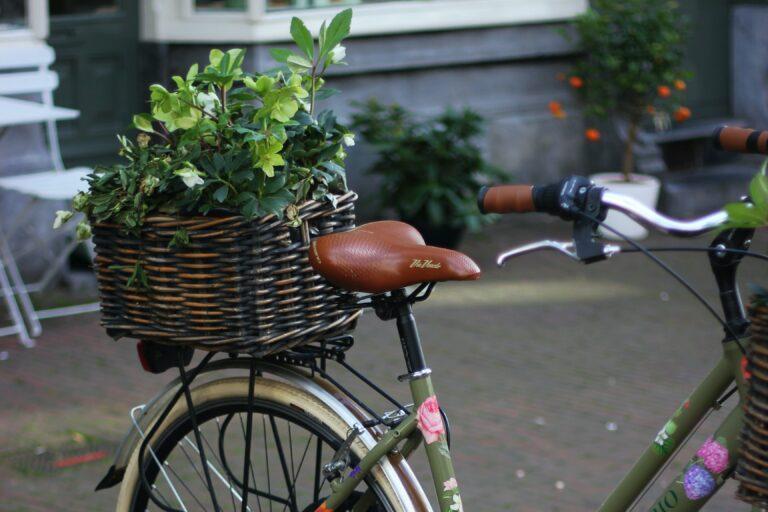 fietsen gezond, sportief, fiets, voordelen