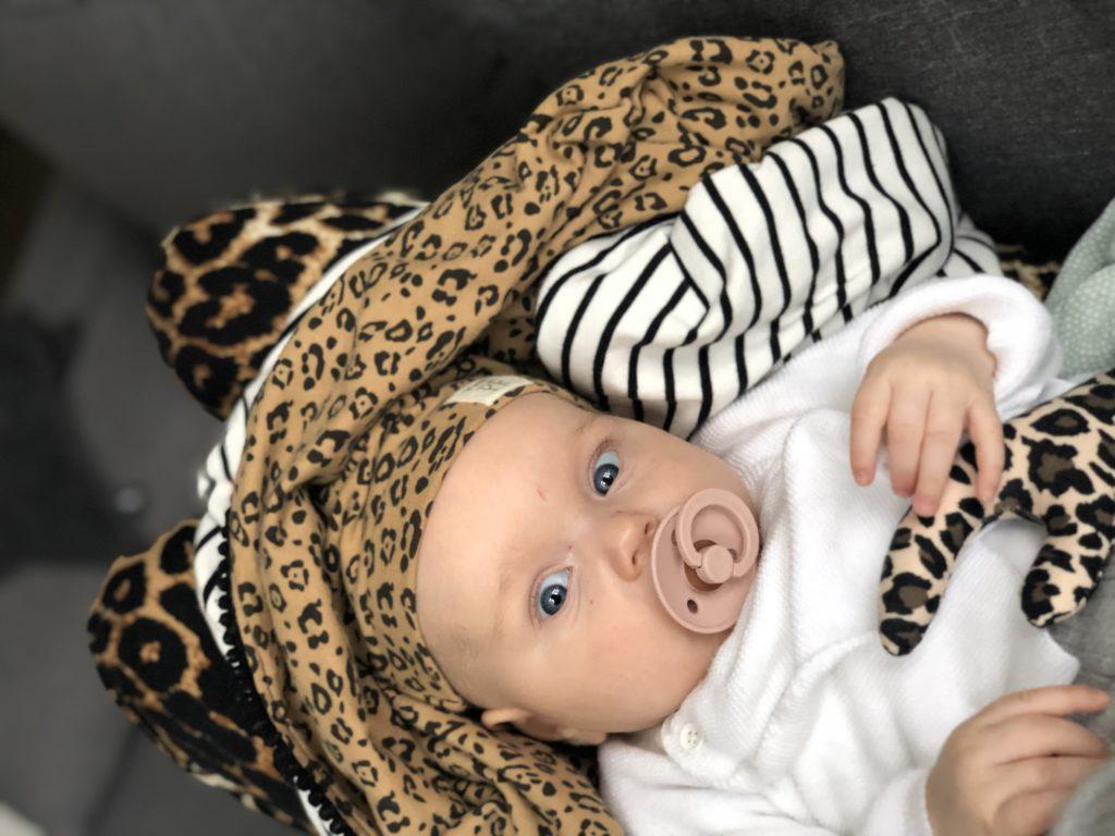 izzy leopard tijderprint