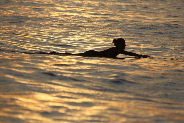 surfen mentawai daisy