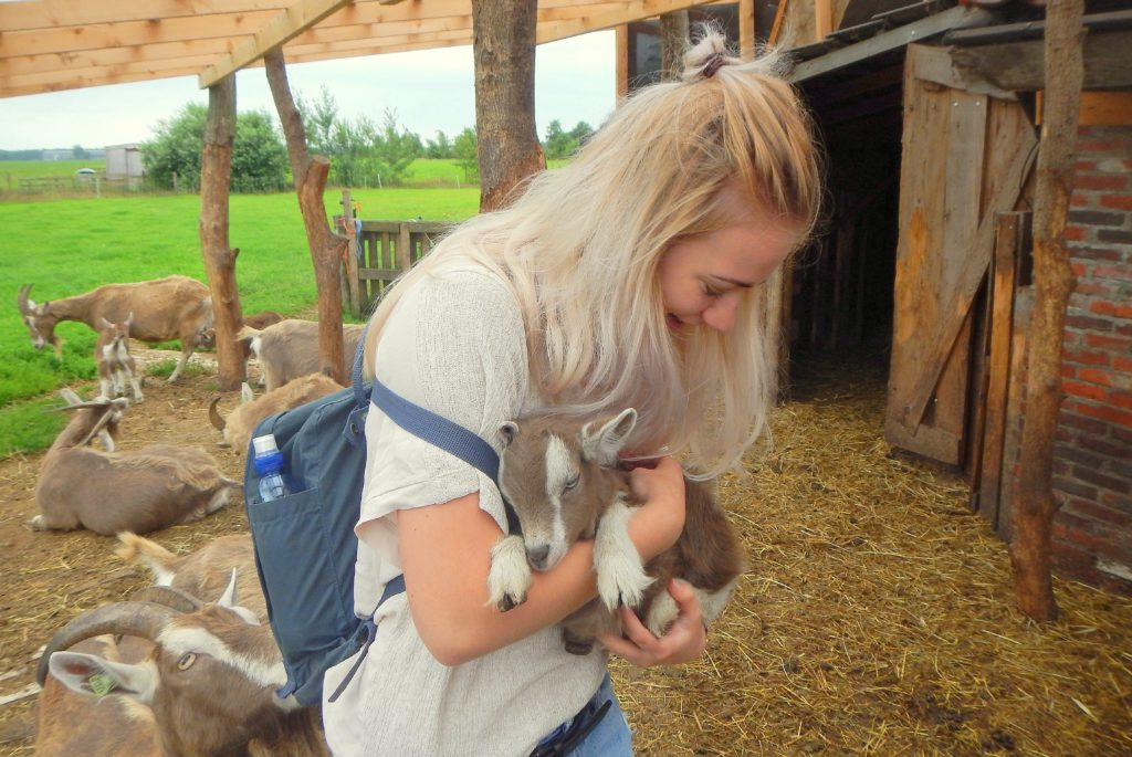 Friesland event biologisch eten