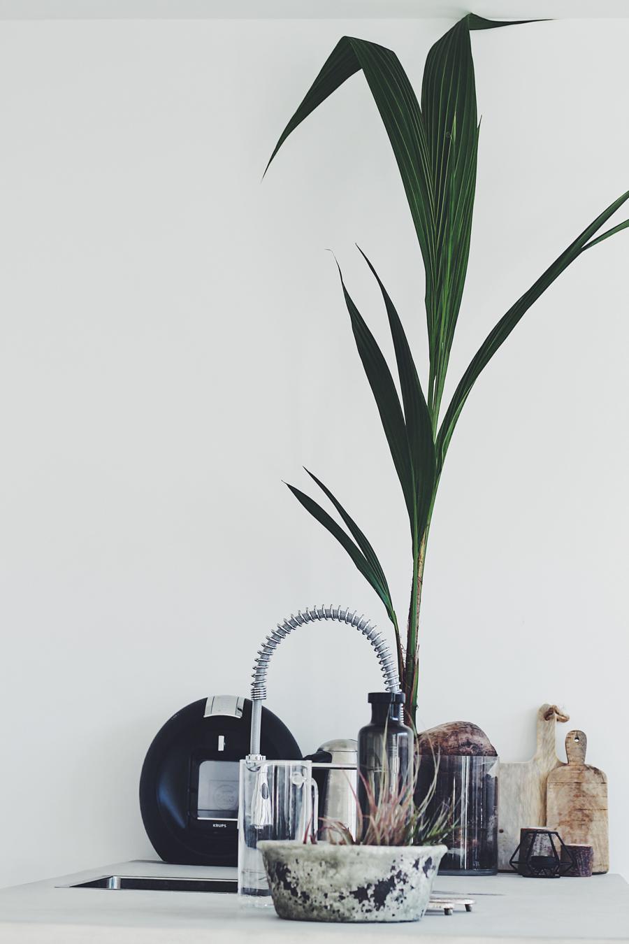 huis daisy keuken