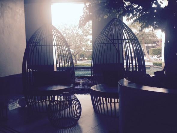 Pool entree met levensgrote vogelkooi-stoelen om in te relaxen.