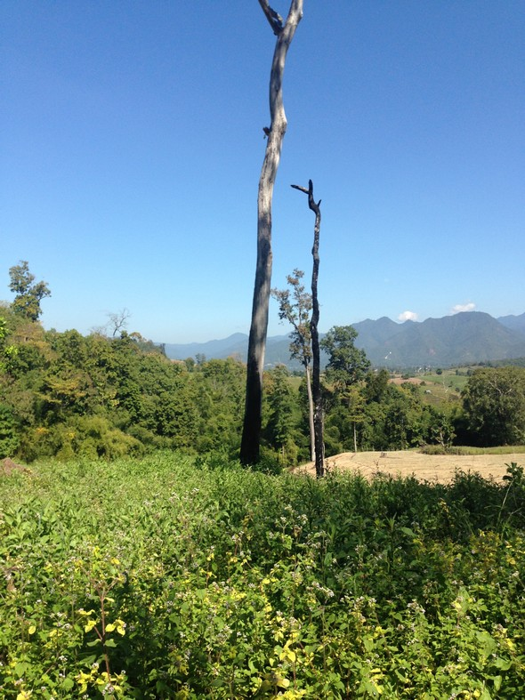 Prachtige omgeving in Pai, in het Noorden van Thailand. Zo anders dan de rest van Thailand, de eilanden.