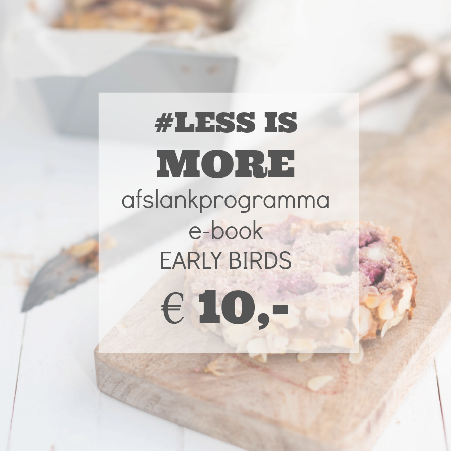 Less is more afslankprogramma e-book januari 2017 early birds 10