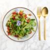 The Health Guide - Mirte Gratama