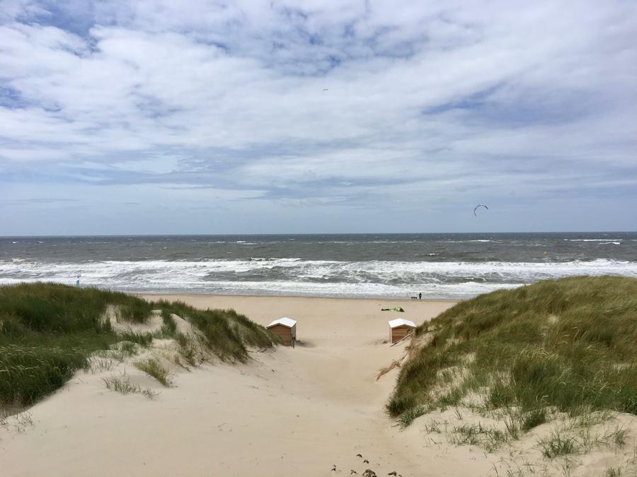 Texel Tips duinen