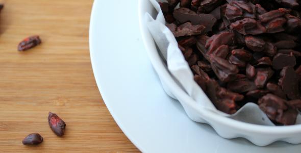 chocolade goji bessen