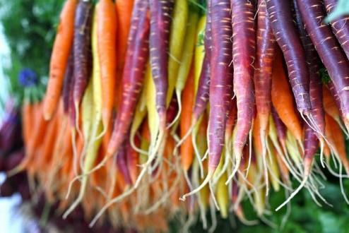 Gekleurde wortels - goedkoop biologisch eten - gezond eten