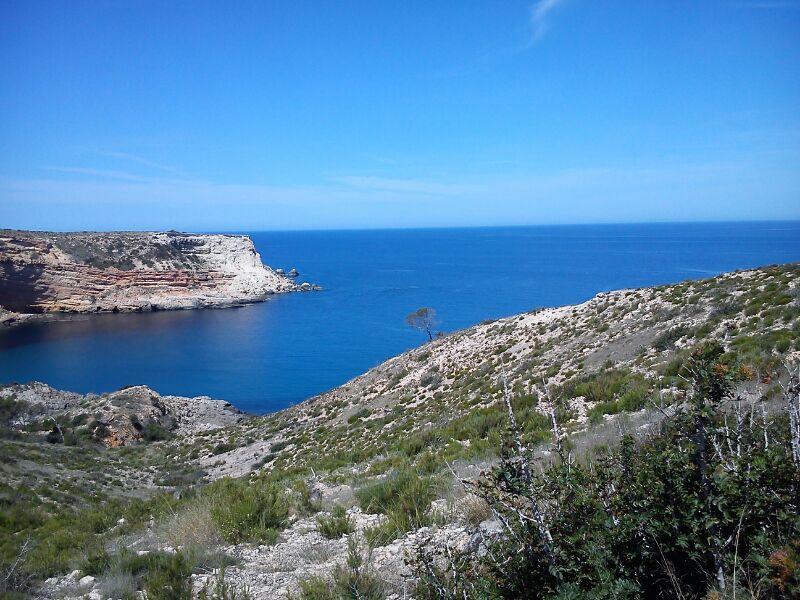 Ibiza Detox & Reload