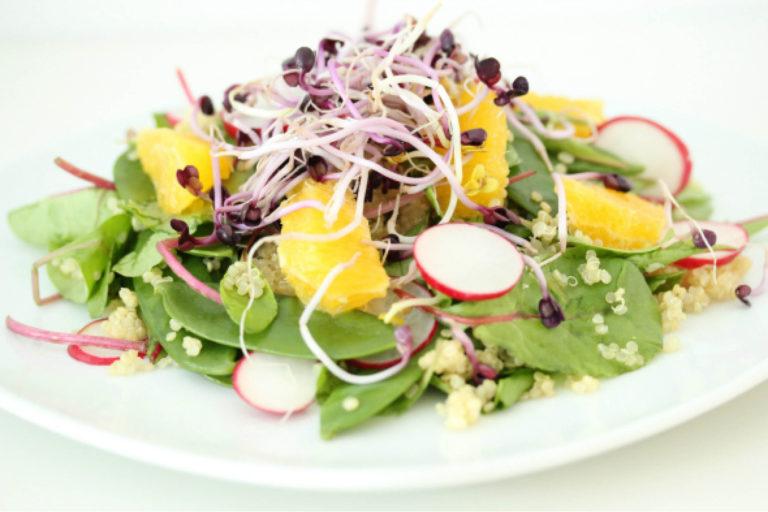 kiemen salade, gezond, radijs