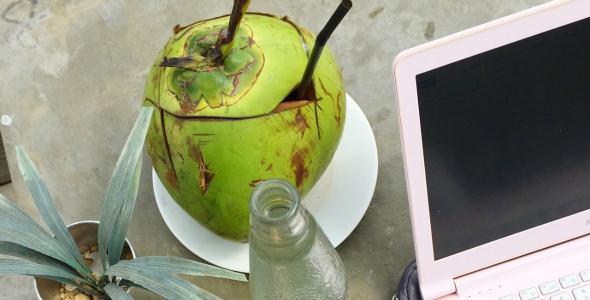 kokosnoot, kokos, bali