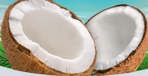Kokosnoot voor kokosolie