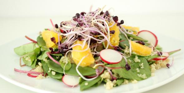 radijskiemen salade