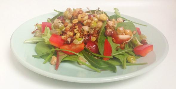 salade met peulvruchten kiemen