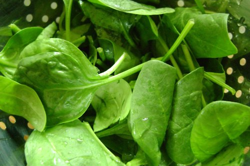 Spinazie voor spinaziesoep met munt recept