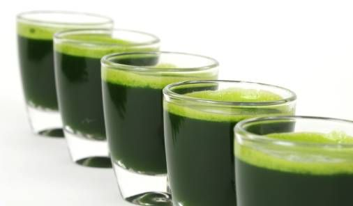 Tarwegras shotjes superfood