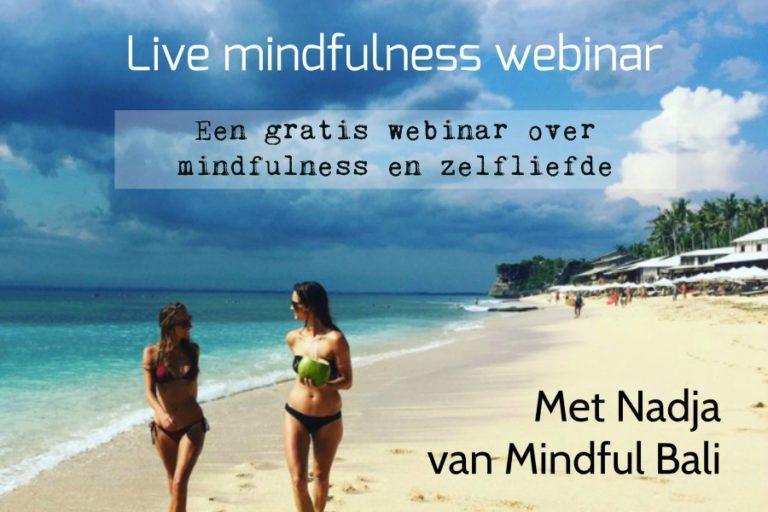 webinar mindfulness klein
